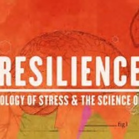 6th December 2017 Multi-agency Networking Lunch & Screening of Resilience